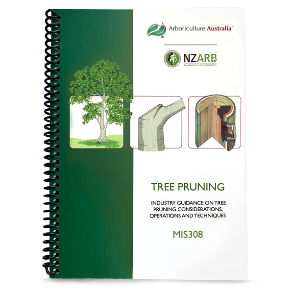 MIS308 Tree Pruning